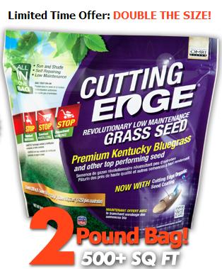 cutting edge grass seeds'