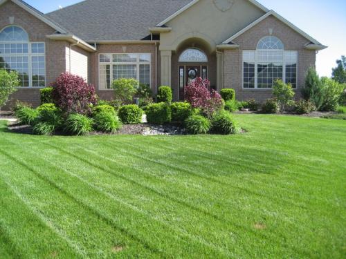 lawn care'