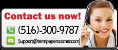 termpaperscorner'