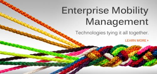 Enterprise Mobility Management'