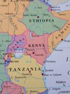 Survival of Kenya's Limbs'