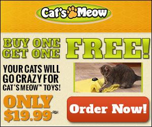 Cats Meow'