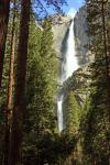 Yosemite Falls Background'