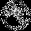 Company Logo For Healing Magic International'