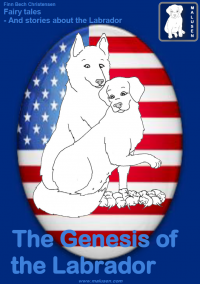 The Genesis of the Labrador