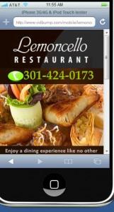 Mobile Friendly Website'