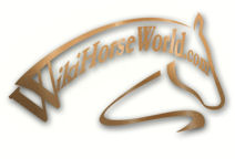 Your One Stop Site For All Things Horses.'