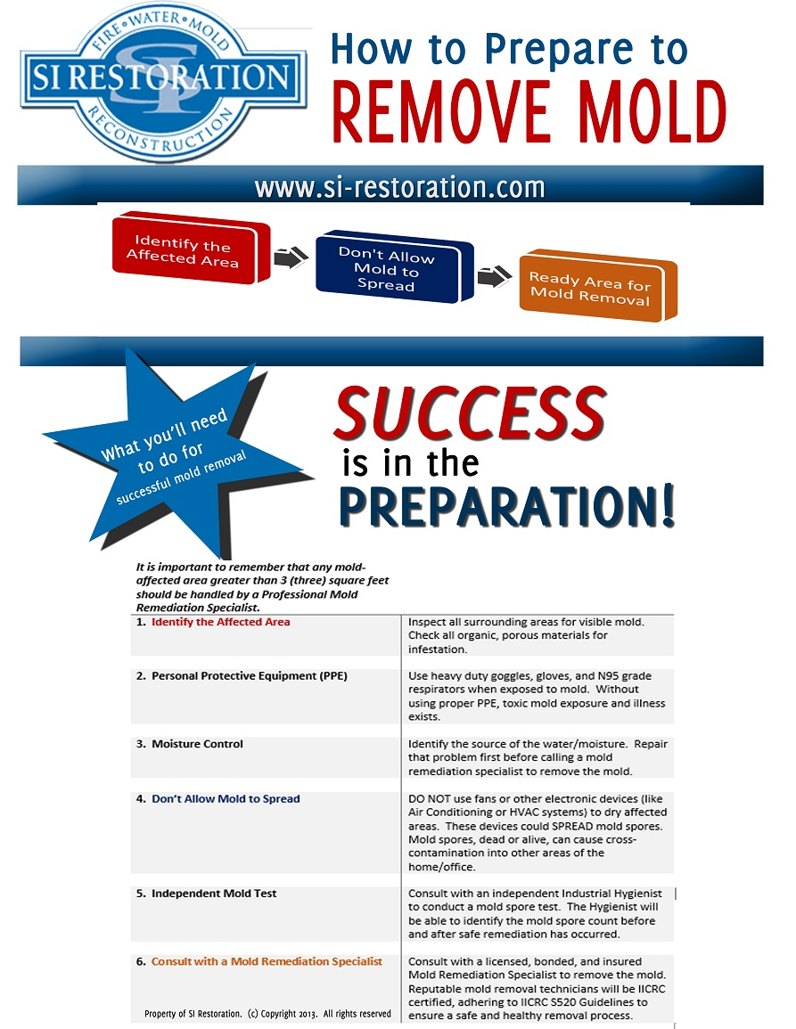 How to Prepare to Remove Mold