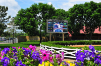 Lighthouse LED Display in Canterbury Park's Paddock Area