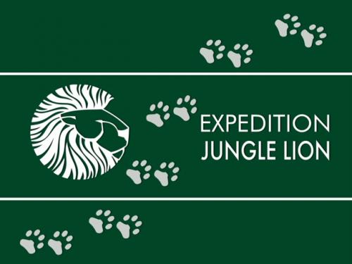 Jungle Lions Film'