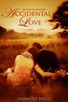 Accidental Love'