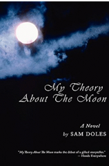 My Theory About the Moon'