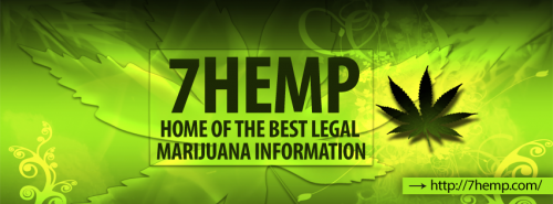 Legal Marijuana Dispensary'