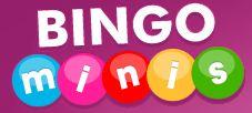 Bingo Minis'