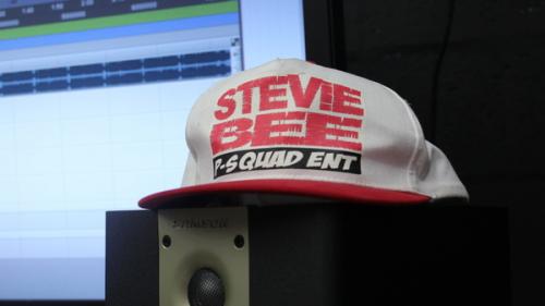 Help Send Stevie Bee'