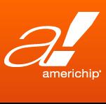 Company Logo For Americhip, Inc.'