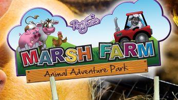 Marsh Farm'