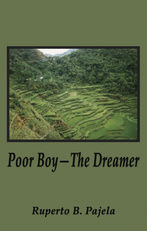 Poor Boy - The Dreamer'