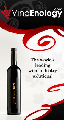 Online B2B Wine Marketplace'
