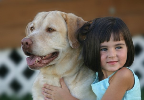 Keeping Pets and People Together'