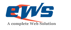 Logo for evolwebsolution'