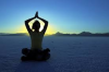 Yoga Teacher'