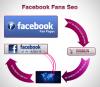 Facebook Fans'
