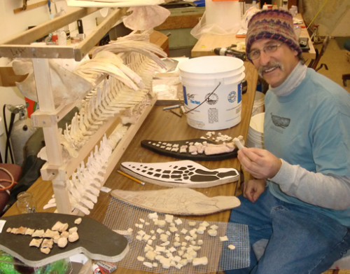 Bonehenge: The Rearticulation of a Sperm Whale'