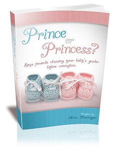 prince or princess book