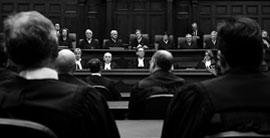 criminal solicitors in maddington'
