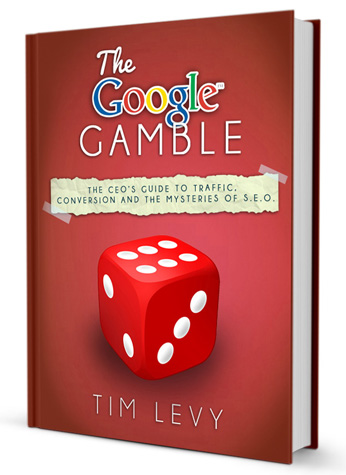 The Google Gamble by Tim Levy'