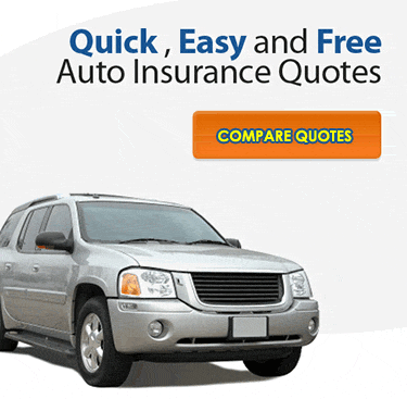 Insurance Gofer'