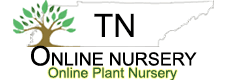 Tn Nursery Logo
