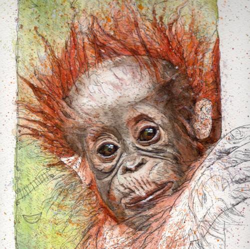 Endangered Species Art Calendar'