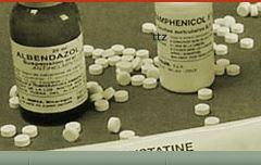 MedPharm Inc.'