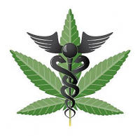 Get-Medical-Marijuana-Now.com