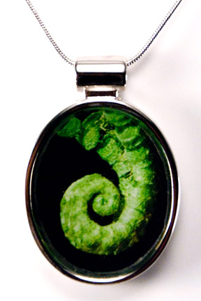 Silver Pendant - Furled Fern (donation to charity)