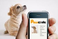 QR Code Pet Tags'