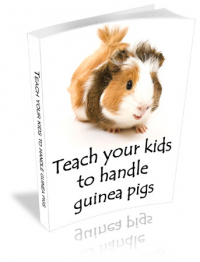 Teach Your Kids to Handle Guinea Pigs