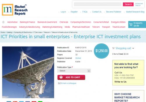 ICT Priorities In Small Enterprises'