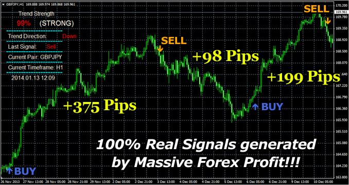 Profit group forex