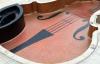 Luxury inground Swimming Pool Tile Design and Installation N'