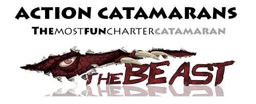 Logo for Action Catamarans'