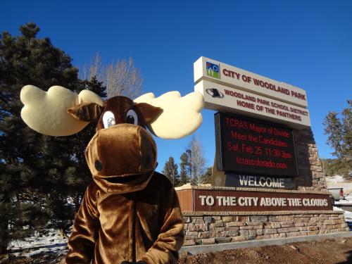 Moose Mascot'
