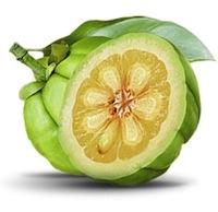 Garcinia Cambogia Fruit'
