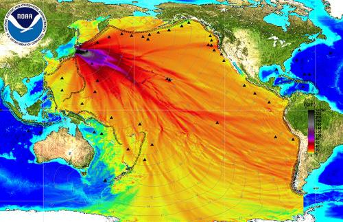 Radioactive Waste Effects on Pacific Fucoidan'