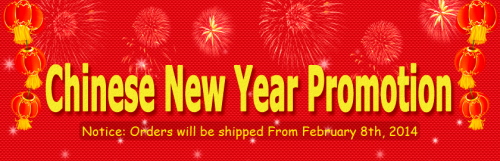 wallbuys 2014 CNY Holiday and Promotion'