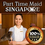 Part Time Maid Logo