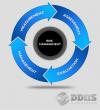 DDHS Risk Management'