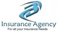 Bachmannzeitlinagency.com Logo